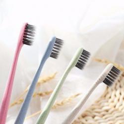 Set 10 chiếc bàn chải đánh răng muji_A